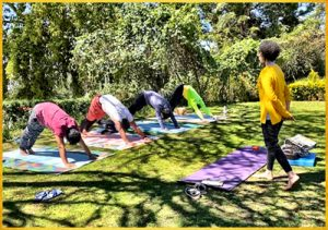 Yoga under the Trees